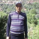 محمد سخراوي Profile Picture